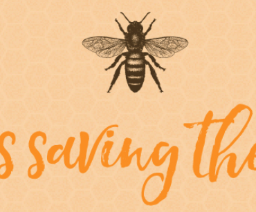 Top tips for saving the bees