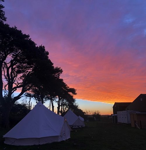 Bell tents at sunrise
